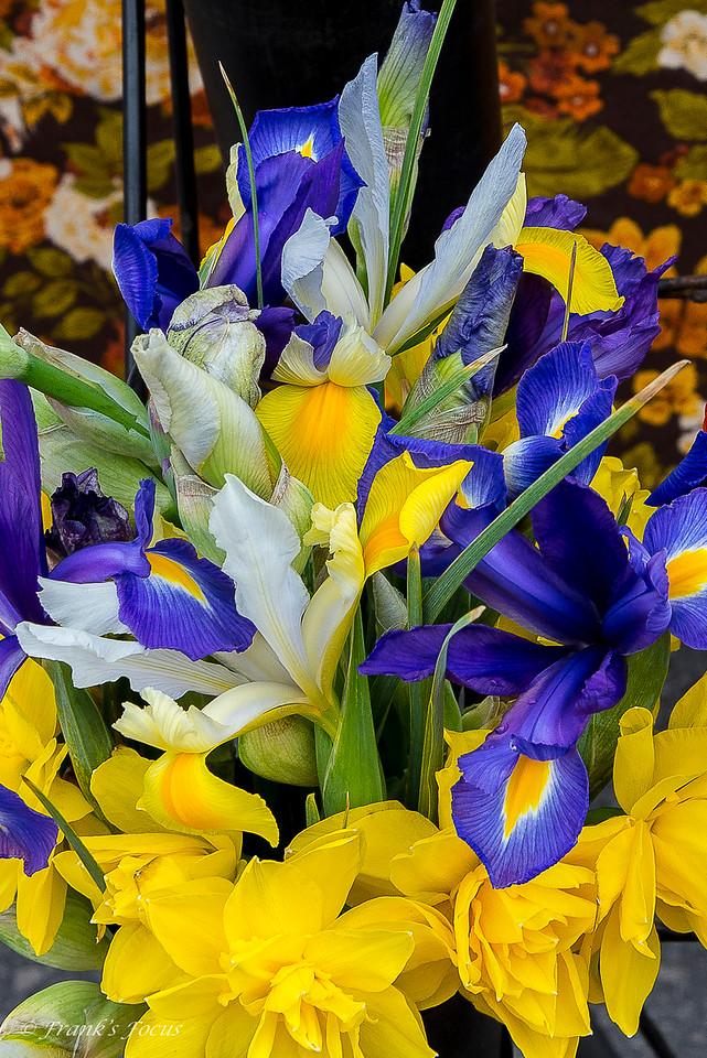 Monday, April 18, 2016 - Spring Color