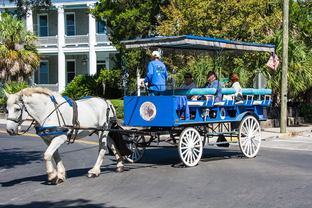 January 28, 2017 -- Carriage Ride