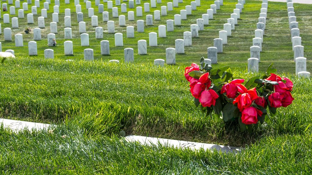 Sunday, May 24, 2015 -- In Honor of Memorial Day