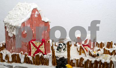 Robert Layman / Staff Photo A contestant for the Chaffee Art Center's Gingerbread Construction Contest. This year's theme is Animal Kingdom.