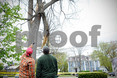 Robert Layman / Staff Photo  Maintenance attendants from the Rutland City Parks and Recreation Department look at the large tree damage in Main Street Park during cleanup Monday afternoon.