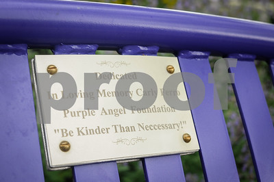"Robert Layman / Staff Photo A plaque on the purple bench in Depot Park, reading ""In Loving Memor yCarly Ferro Purple Angel Foundation ""be Kinder Than Neccessary."""