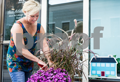 Robert Layman / Staff Photo Allison McCullough trims up a pot her aster flowers outside her real estate office on Center Street in Rutland Friday.