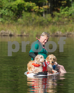 Robert Layman / Staff Photo Jim Grimm sits on a paddleboard with a pair of golden doodles as he floats around the cool waters of Chittenden Resevior Tuesday.