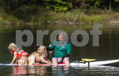 Robert Layman / Staff Photo Jim Grimm pats his golden doodle Arthur, center, as he eyes his younger brother Body during a game of water fetch at Chittenden Resevior Tuesday afternoon. Grimm and his family were among many who took to the waters Tuesday to cool down.