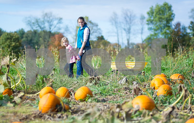 Robert Layman / Staff Photo Hannah Lamoureux, 5, left, and her mother Rose walk through the pumpkin patch at Winslow Farms in Pittsford Friday afternoon.