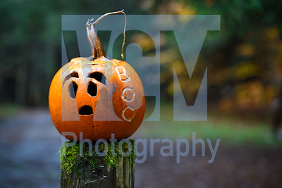 Jeb Wallace-Brodeur / Staff Photo A carved pumpkin sits on a post Thursday in Montpelier's Hubbard Park. Numerous Halloween events are taking place in central Vermont thiis weekend.
