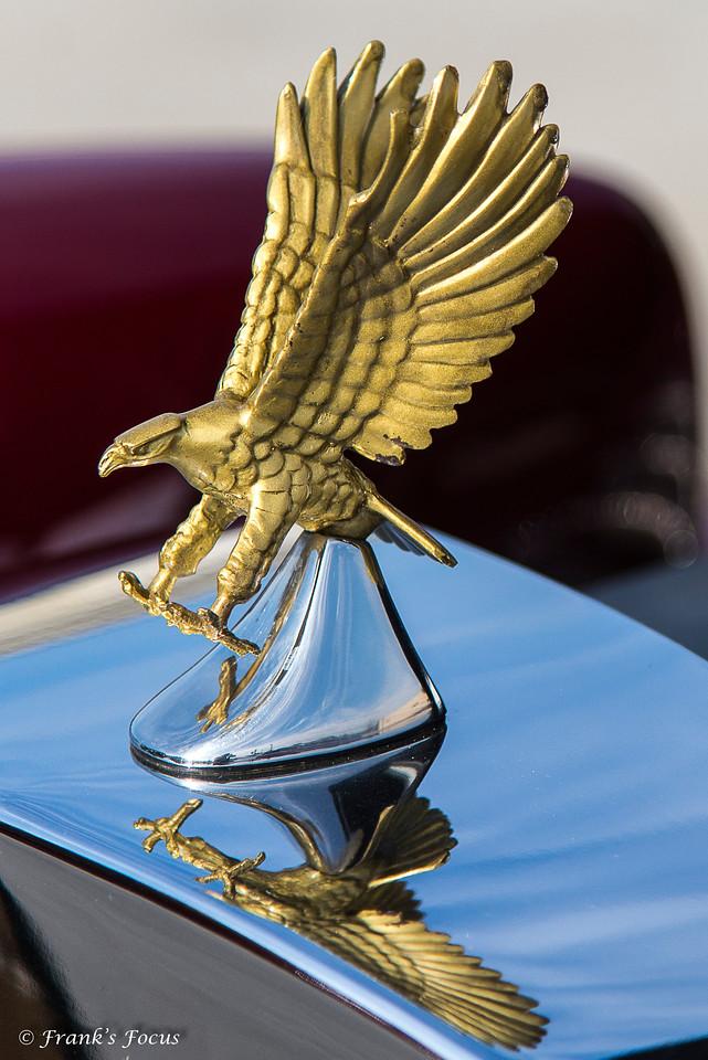 April 9, 2018 -- Golden Eagle