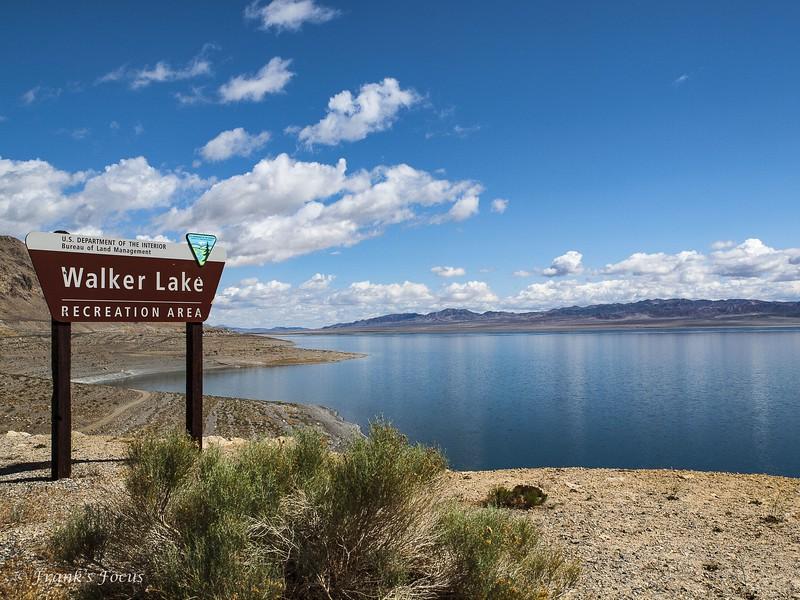 """""""W"""" is for Walker Lake"""
