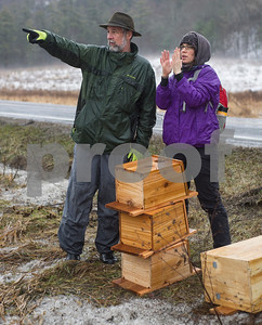 Robert Layman / Staff Photo  Murray McHugh, Critical Lands Manager, Southern Vermont and Bonnie Nightingale eye the trees in the clayplain forest where the bird houses will be installed.