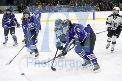 Stowe vs U-32 girls hockey