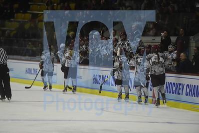 Norwich vs Hamline womens hockey