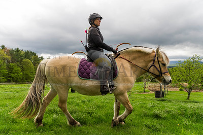 Julie Miller of Simsbury, CT rides a Norwegian Fjord Horse during a New England Mounted Archery clinic at Briar Hill Farm in East Calais on Sunday.  Josh Kuckens/Staff Photo