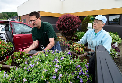 Jeb Wallace-Brodeur / Staff Photo Dave Gold, from Edward Jones in Barre, and Theresa McMahon, of Barre, load flower planters into a truck Friday to be delivered to downtown Barre merchants. The Granite Center Garden Club and the Barre Partnership filled more than 30 planters with flowers that will beautify the downtown this summer.