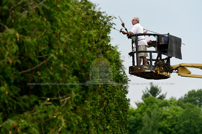 Jeb Wallace-Brodeur / Staff Photo Randy Pickel, of Randy Pickel Tree Service in Orange, trims a huge hedge Wednesday surrounding the tennis courts at the Barre Town Recreation Fields.