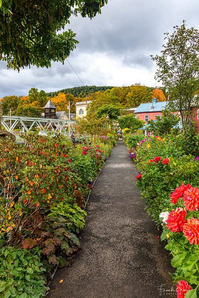 October 29, 2019 -- Bridge of Flowers