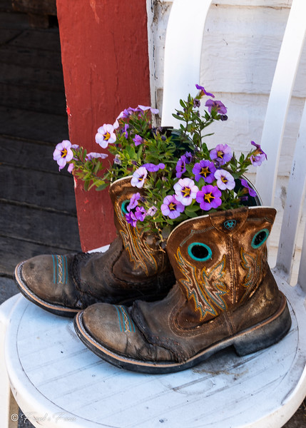 September 26, 2019 -- These Boots were made for flowers