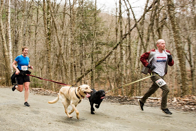 South Burlington roommates Kristi Kilpatrick, left, and John Gardner-Morse, right, run with their dogs Toby and Max in Little River State Park on Sunday during the annual Mutt Strut race.
