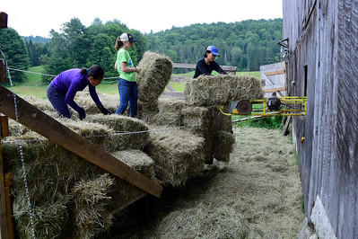Addie Hannan, left, Aine Fannon, and Ang Sherpa, right, race the weather Thursday to unload bales of hay into a barn at Butterfield Beef and Berry farm in Calais.
