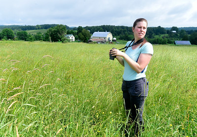 Liza Morse, a landowner outreach technician for the Vermont Center for Ecostudies, looks for Bobolinks in an unmown hay field Friday at the Center Farm in East Montpelier. The organization is working with farmers to identify nesting sites for Bobolinks and hopefully delaying haying until chicks have left the nest. Morse observed numerous nesting pairs on the property and landowners Erica Zimmerman and Kevin McCollister are adjusting their cutting schedule to help conserve the grassland birds' habitat.