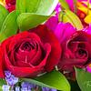 February 14, 2020 -- Valentine Roses