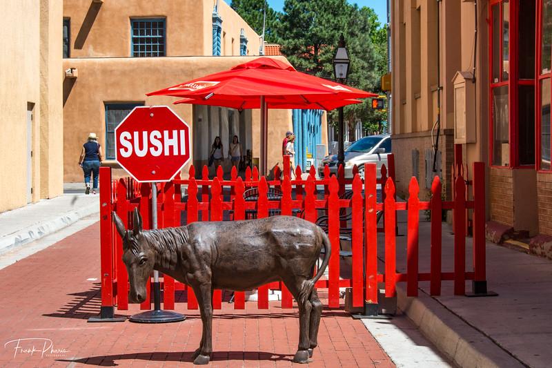 June 17, 2020 -- Sushi or Burro??