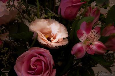 8/19   Floral Display