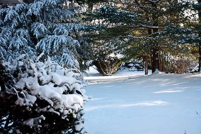 12/26   Beautiful but Frigid Cold