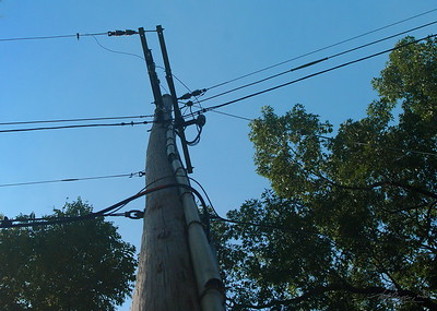 9/19  Utility Pole Looking Up