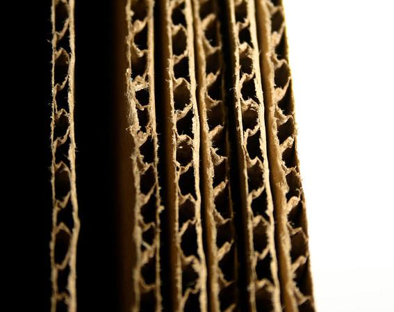 12/21 Cardboard Close Up.