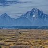 "October 8, 2009 - ""From The Plains to The Mountains""<br /> <br /> This was shot from the observation deck of the Jackson Lake Lodge in the Grand Teton National Park.  This is a great place for a rest room break, but also bring your camera with you for some expansive scenes."