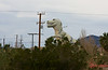 Driveby shooting<br /> <br /> (Dec. 29, 2009) I did take some photos today, but I can't let December get away without the annual driveby t-rex shot from Banning Pass.