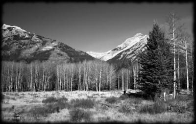 August 31, 2009  Lone hiker...