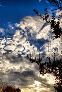 "March 15, 2009 - ""Late Afternoon Clouds"" - I shot this a photo a couple of weeks ago while in my backyard.  The cloud formations  were unusual for this time of the year."