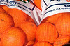 Cargo<br /> <br /> (Dec. 23, 2009) These oranges, Gracey and we are headed to Arizona tomorrow. I'm showing the oranges here so that the family knows they are on their way. Merry Christmas, Happy Hanukkah and Happy Holidays to the daily photo community. Catch up with all of you on the other side of Christmas.
