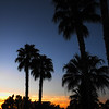 "March 25, 2009 - ""Sunrise on the Desert"" - This photo is at sunrise last week in Palm Desert, California."