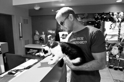 Dec 17, 2012 - Playing with the cats at the hotel.