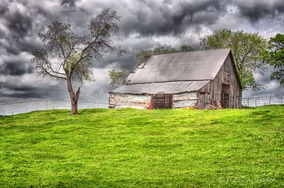 "April 5, 2012 - ""Weathered""  Here is a way to shoot this barn without including any bluebonnets."