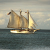 "June 23, 2013 - ""Full Sail""<br /> <br /> - light was good, poor focus, but liked the image -- so presented as an old photo"