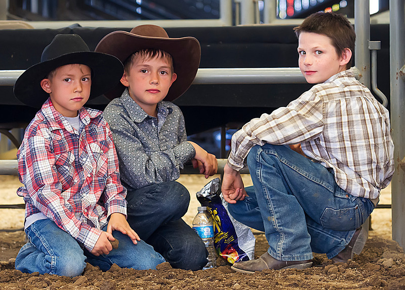 Up to no good<br /> <br /> (May 9, 2013) Finished up the Norco Horseweek photos today, while backing up the Show and Go photos. My old babysitter instincts tell me to not trust this trio as far as I can throw them.