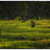 "June 24, 2013 - ""Forgotten""<br /> <br /> Old Trinity Cemetery section of the historic Oakwood Cemetery in Fort Worth."
