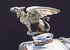 Griffin<br /> <br /> (June 9, 2013) Hood ornament on a 1929 Gardner. According to the owner, the griffin was the emblem/crest of the Gardner family. I think it might be my favorite hoodie ever.