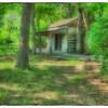 "May 5, 2013 - ""Great Grandma's House"""