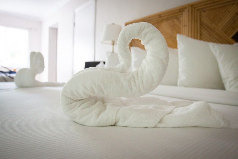 """March 23, 2013 - Our last day at the Worthington and we came home to some towel swans on the bed.  (Please notice the """"Golden Girls"""" style furniture in the background.)"""