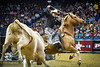 Role Reversal<br /> <br /> (November 16, 2016) From the PBR Velocity Tour last Saturday. The bull decided he was going to catch himself a cowboy, one way or the other. It all ended well.