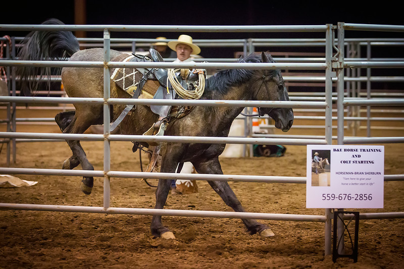 A Good Start<br /> <br /> (February 24, 2017) It was the beginning of the Colt Starting Challenge in Norco and the young horses were not so sure about these things called saddles. By the end of two hours, 4 out 6 horses were saddled and being ridden.