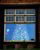 It's beginning to look a lot like Christmas . . . and Hanukkah<br /> <br /> (December 17, 2017) Walks around the neighborhood are much more interesting and colorful in December.