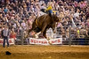 Every Which Way<br /> <br /> (September 24, 2017) . . . and loose. Saturday night is always a little crazy at the San Bernardino Sheriff's Rodeo.