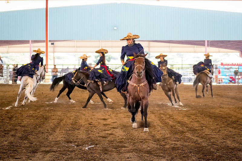 Escaramuza<br /> <br /> (November 2, 2017) More of the Mexican Drill Team from the Norco Horse Affair.
