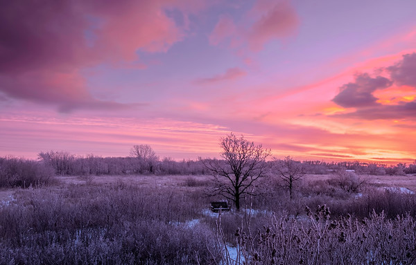 """""""Red sunrise in the morning, sailor take warning...."""" I wonder what pink sunrise in the morning means... any ideas?   I think it may mean """"sailor take out your camera, quickly!""""  (Shot off our back deck a couple of days ago.) 12/13/18"""